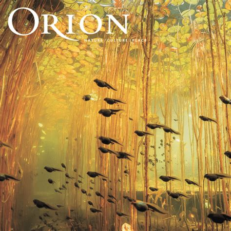 Fire and Grit Special - 1 Year Print Subscription   Orion