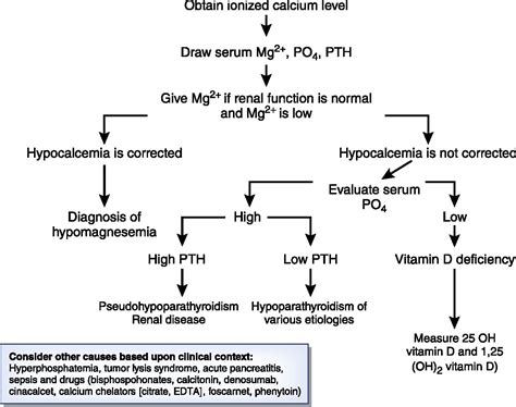 Hypocalcemia in a Patient with Cancer | American Society